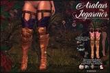 Araleus Legs MAIN